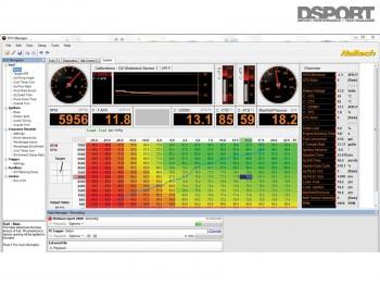Screen capture of a Haltech manager