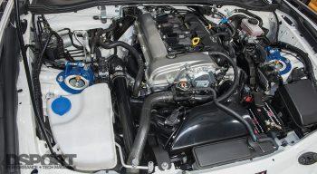 Avo Turbo Miata Engine Bay